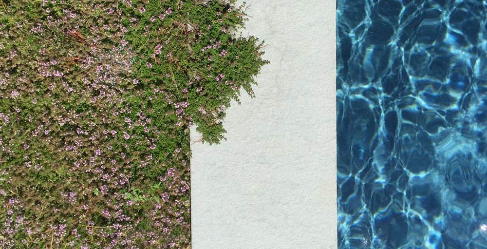 Moss Ledge Pool by O'Neill Rose Architects | Gardenista