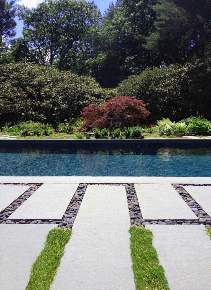 The architects planted a mix of Irish moss and thyme between the bluestone pavers. For more of this project, see Swimming Pool of the Week: A s&#8