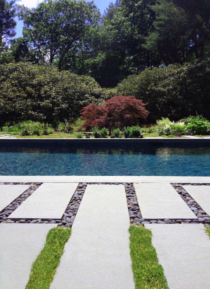 bove: Brooklyn-based O'Neill Rose Architects filled the bluestone pavers near the pool with Mexican beach pebbles and also planted a mix of Irish moss (Sagina subulata) and thyme. For more of this project, see Swimming Pool of the Week: A s Summer House at the Edge of the Woods in the Berkshires. Photograph by Michael Moran, courtesy of O'Neill Rose Architects.