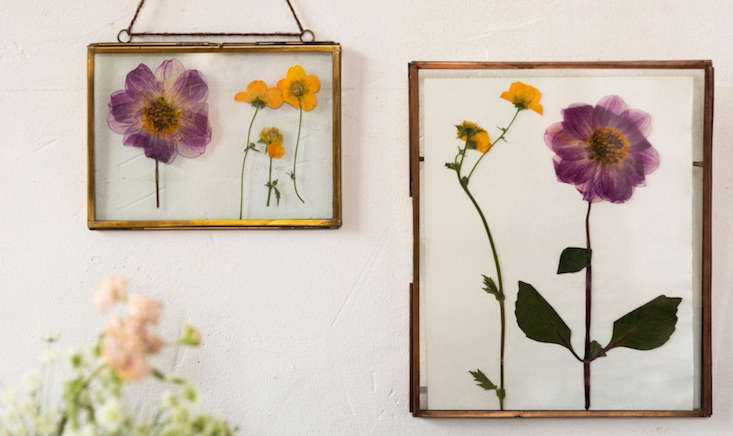 Terrain_Mid Summer Blooms_Gardenista_Current Obsessions