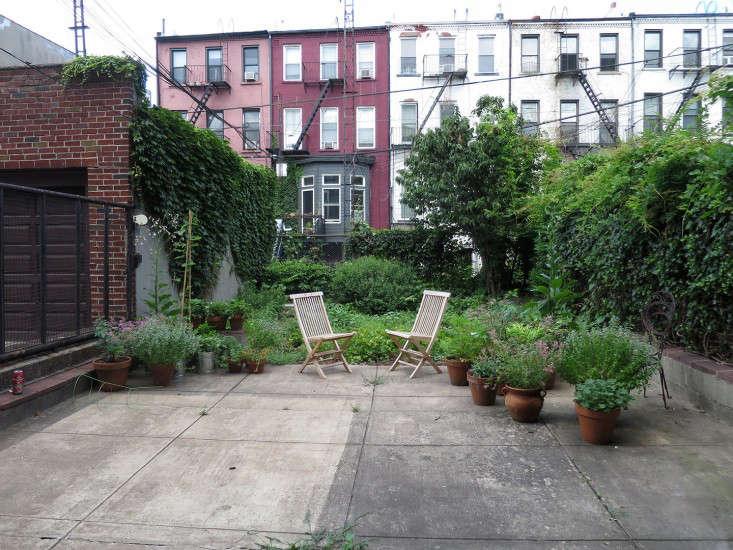 bare_yard_Brooklyn_marieviljoen_Gardenista