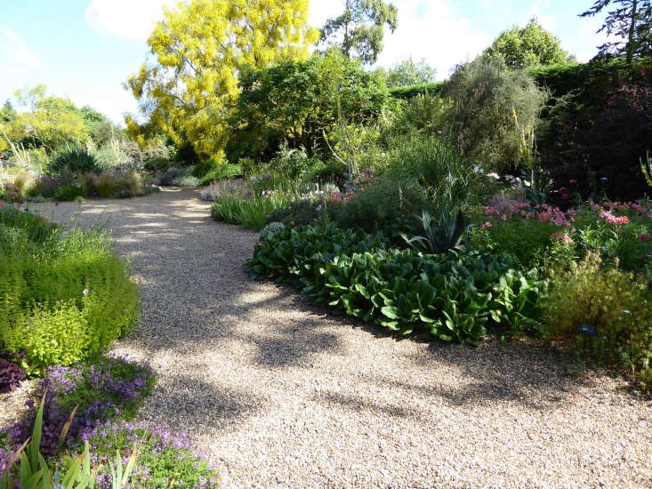 Beth Chatto&#8\2\17;s gravel garden. Photograph by Clare Coulson.