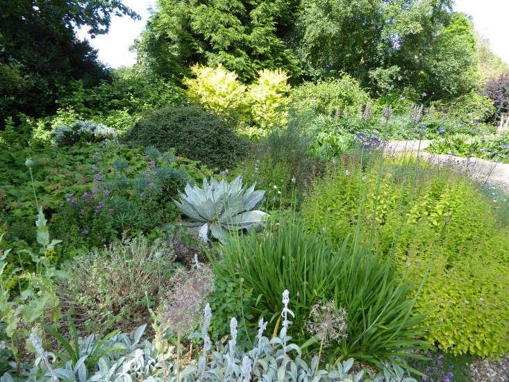 beth-chatto-gravel-garden-Agave-gardenista