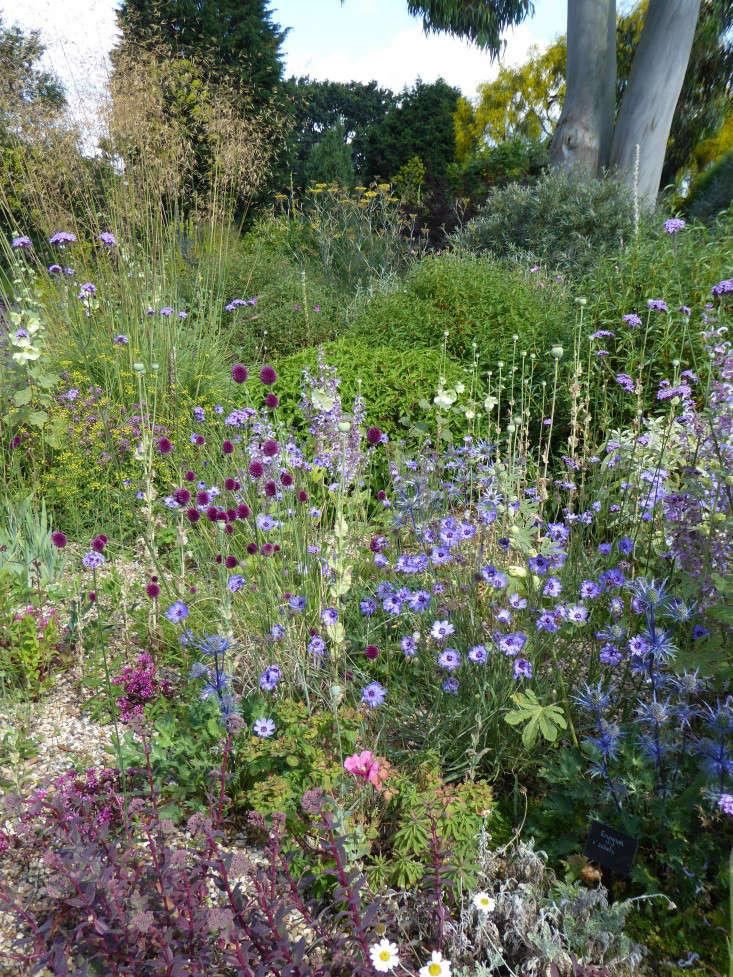 beth-chatto-gravel-garden-cutting-back-gardenista