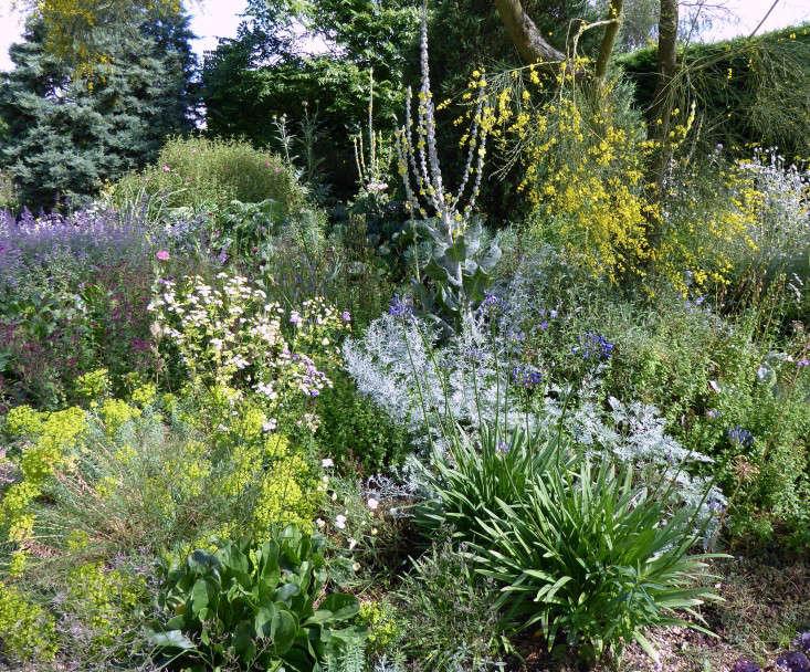 beth-chatto-gravel-garden-triangles-design-gardenista