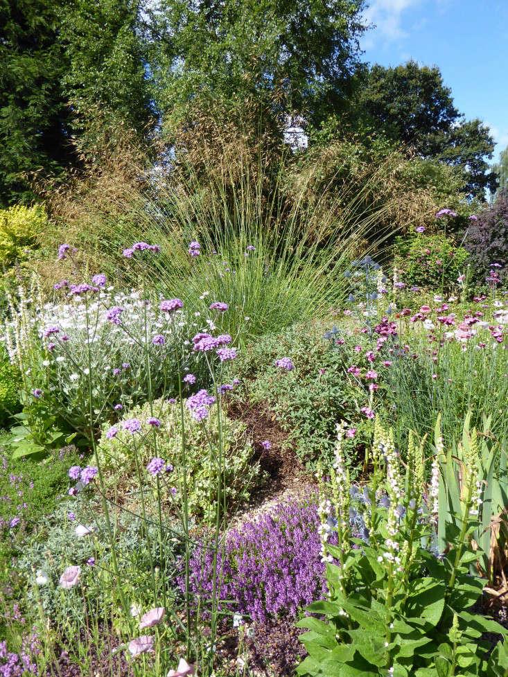 beth-chatto-scented foliage-gravel-garden-gardenista