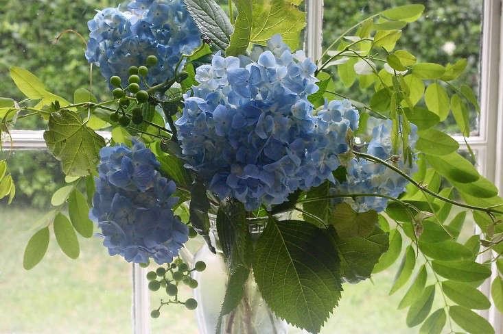blue-hydrangeas-floral-arrangement-locust-gardenista