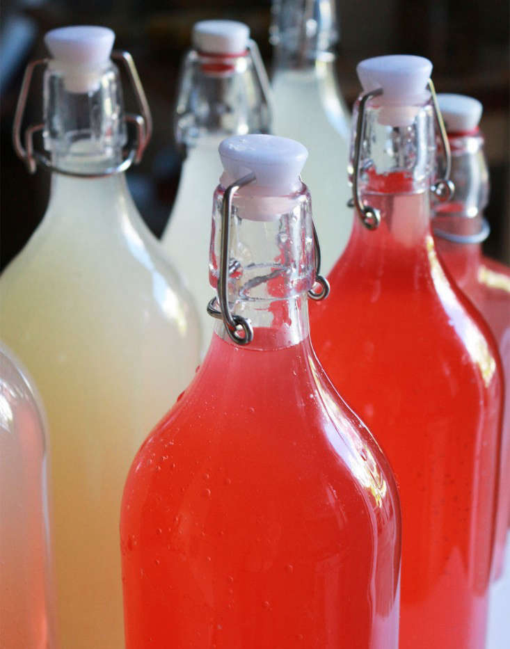 bottles_milkweed-cordial-marieviljoen-gardenista