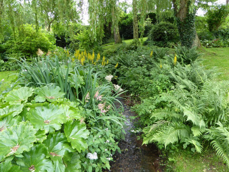 Garden Visit: A Wildflower Meadow at the Edge of an English Cottage Garden