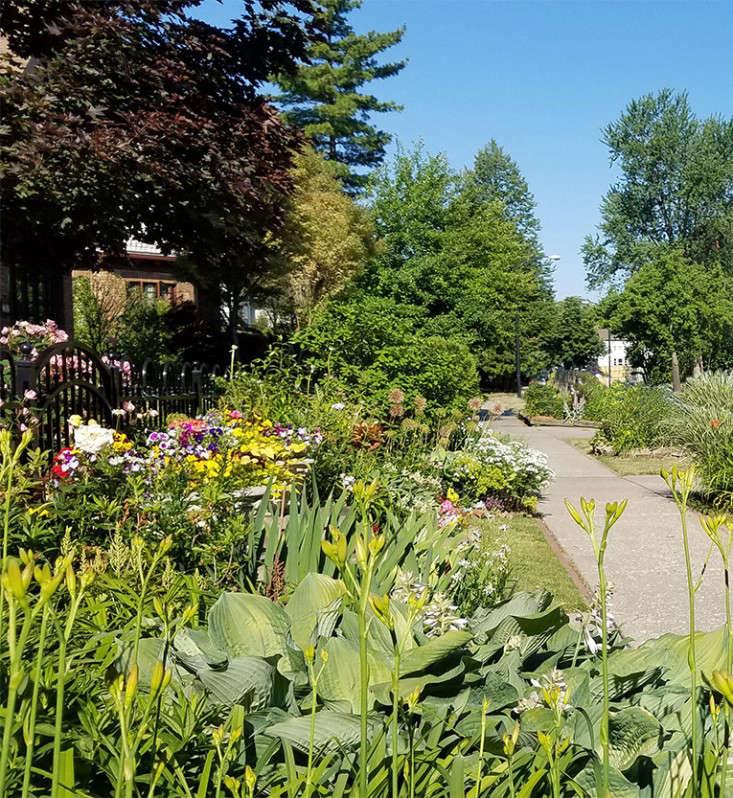 buffalo-sidewalk-hell-strip-garden-marieviljoen-gardenista