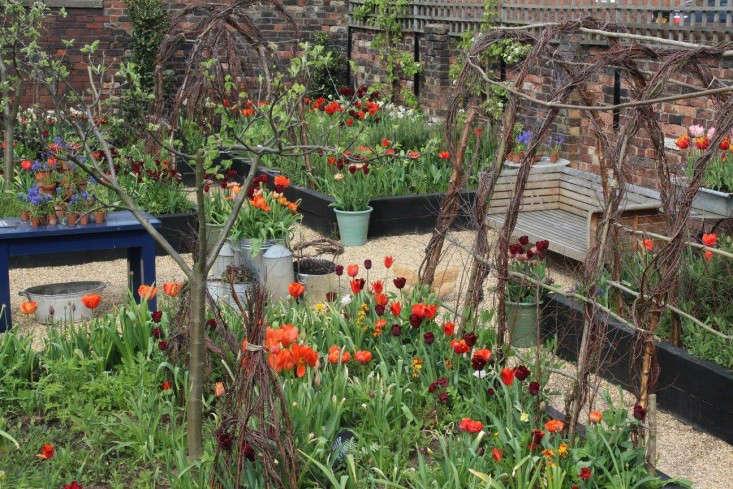 emma-bridgewater-arthur-parkinson-birch-tunnels-tulips-spring-gardenista