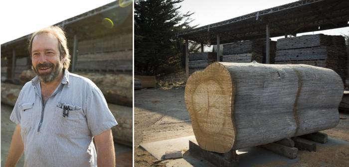 evan-shively-tree-trunk-gardenista