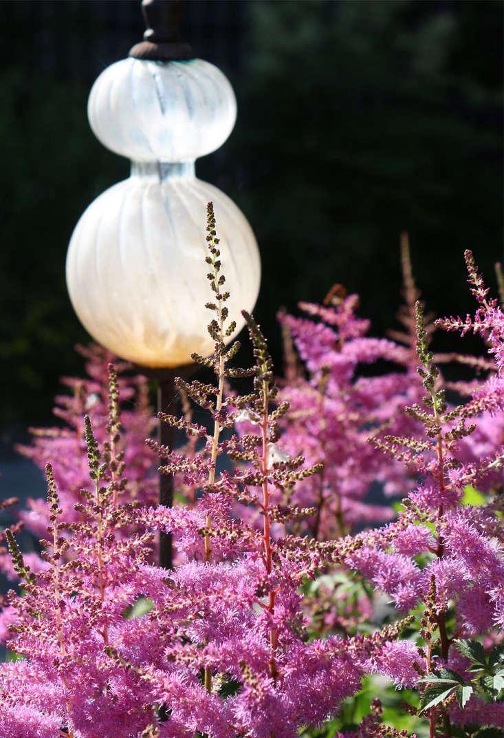 garden_ornament_buffalo_marieviljoen_Gardenista