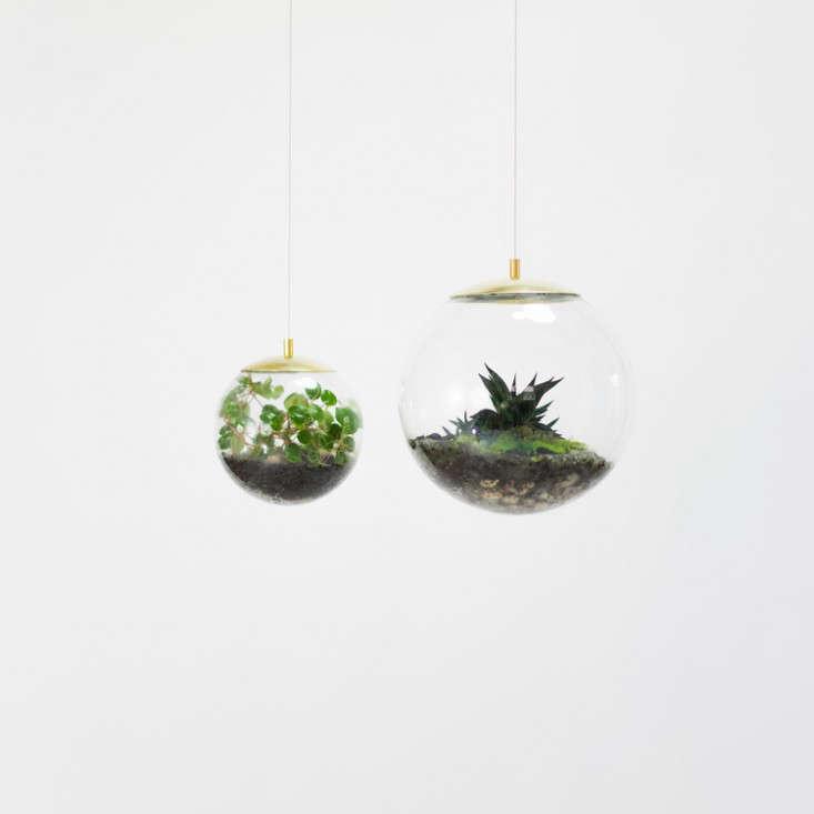 globe-terrarium-hanging-glass-2-gardenista