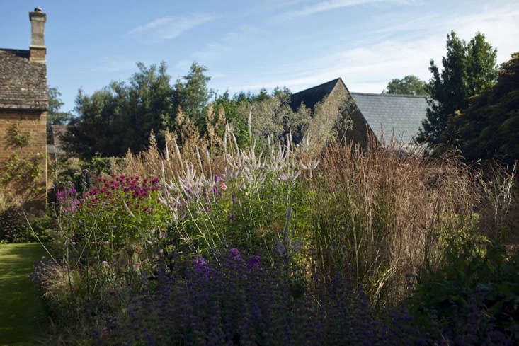 lessons-learned-oxfordshire-grasses-perennials-beds-roofs-jim-powell (1)