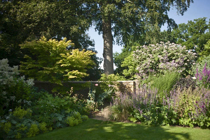 lessons-learned-oxfordshire-stone-wall-garden-beds-euphorbia-jim-powell (1)