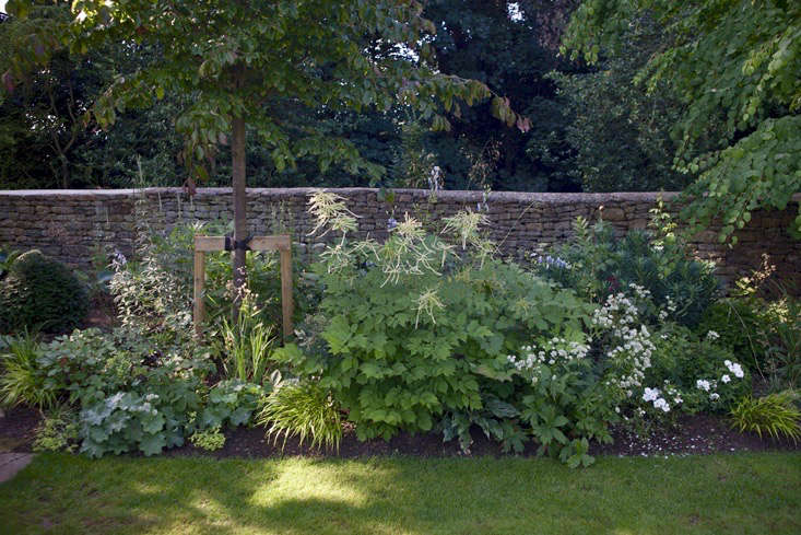 lessons-learned-oxfordshire-tree-supports-jim-powell-gardenista