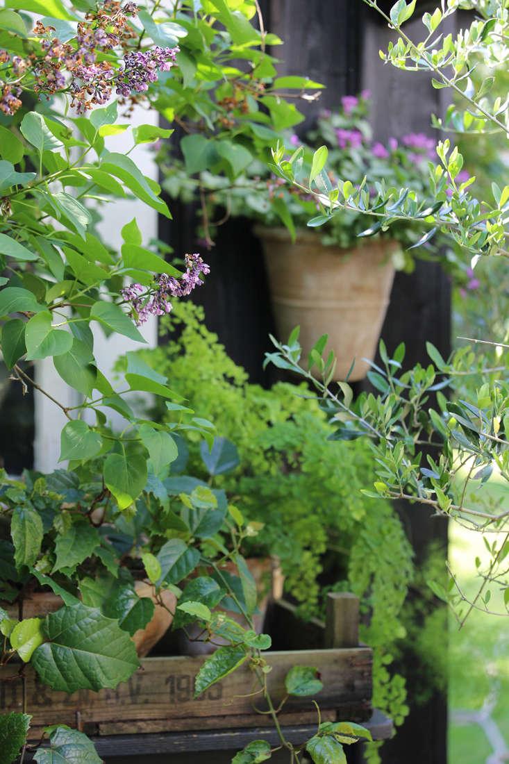 mette-krull-shed-2-gardenista