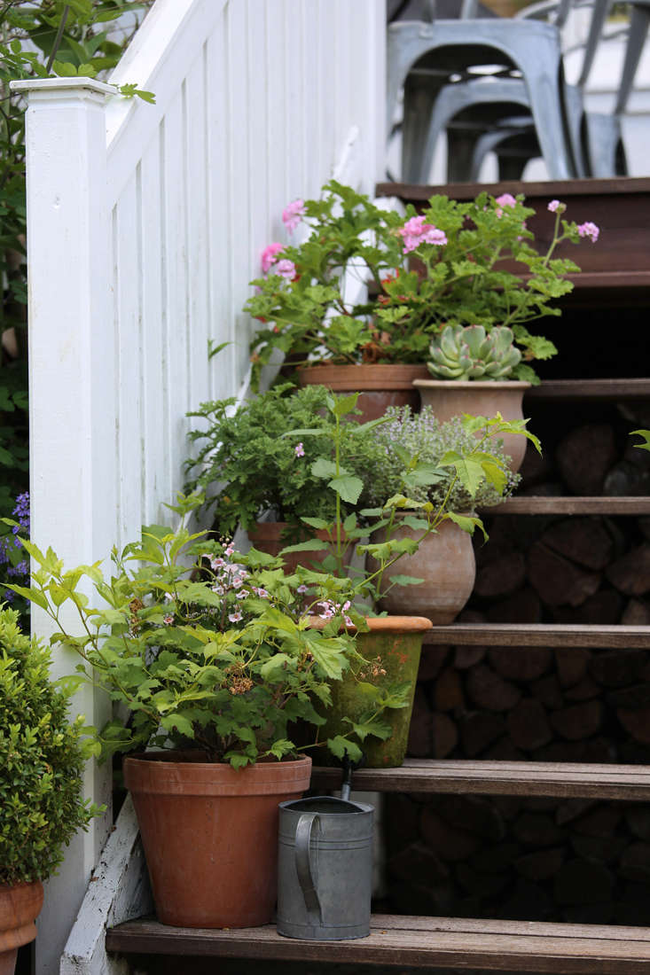 mette-krull-stair-2-gardenista