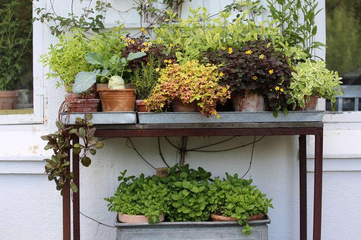 mette-krull-table-1-gardenista