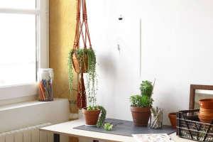 modern-macrame-planters-gardenista
