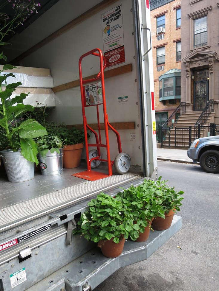 movers_truck_potted_plants_gardenista_dolly_marieviljoen