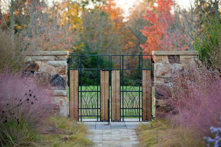 Photograph by Eric Piasecki/OTTO courtesy of Nelson Byrd Woltz Landscape Architects. Planted on either side of a gate, Muhlenbergia creates a pleasing mirror image.