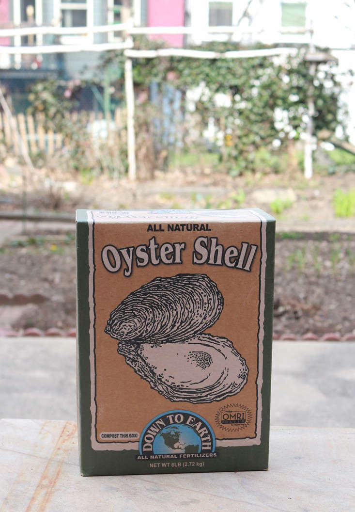 oyster_shells_box_marieviljoen_Gardenista