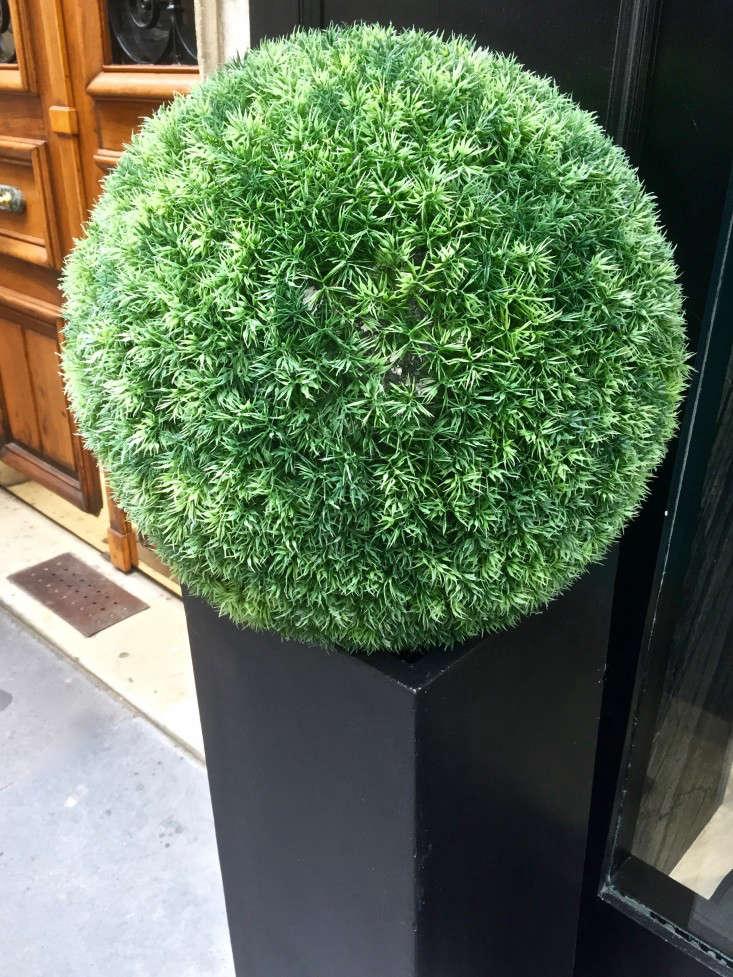 paris-fake-plants-gardenista