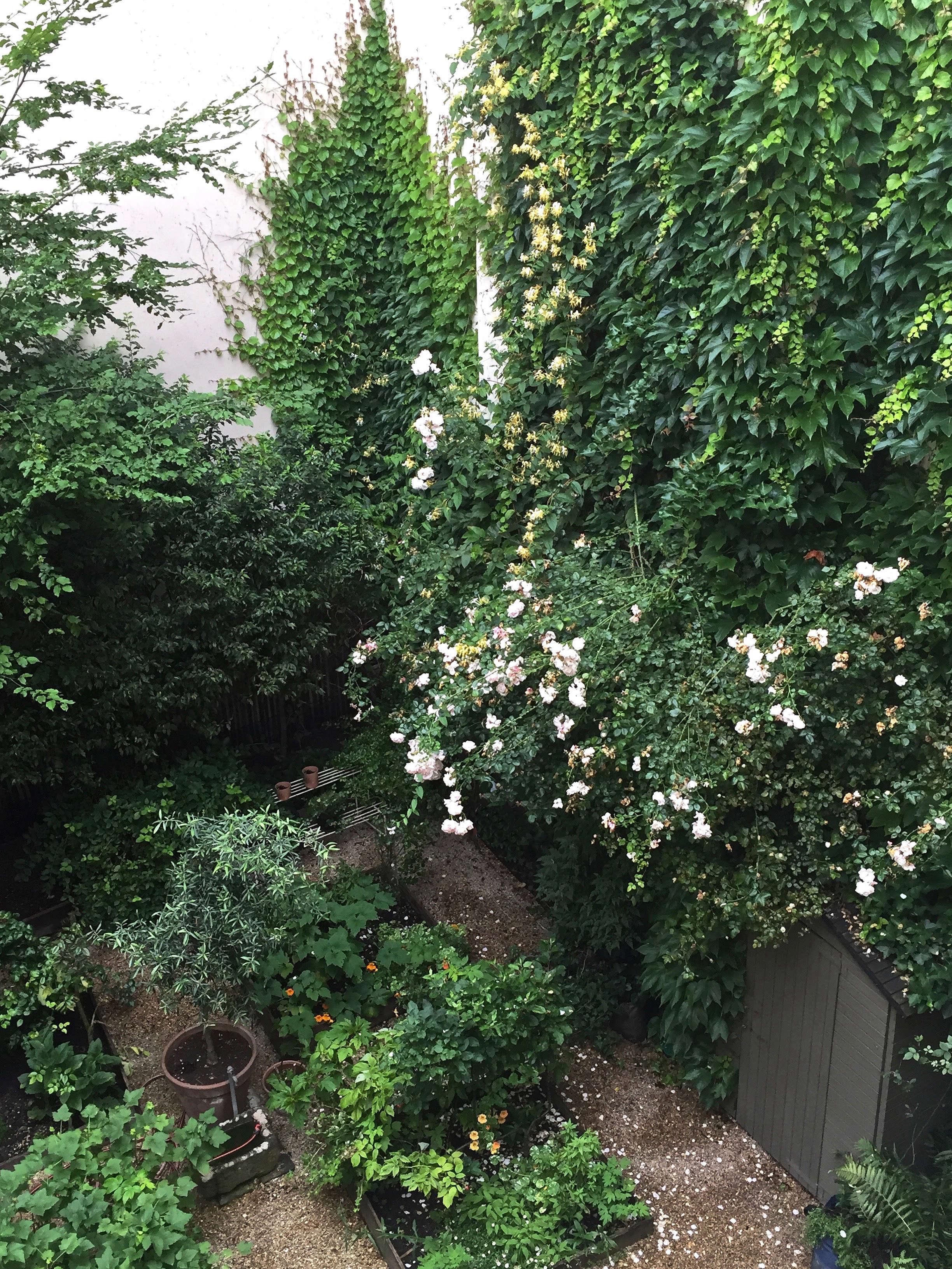 paris-garden-ideas-1-gardenista