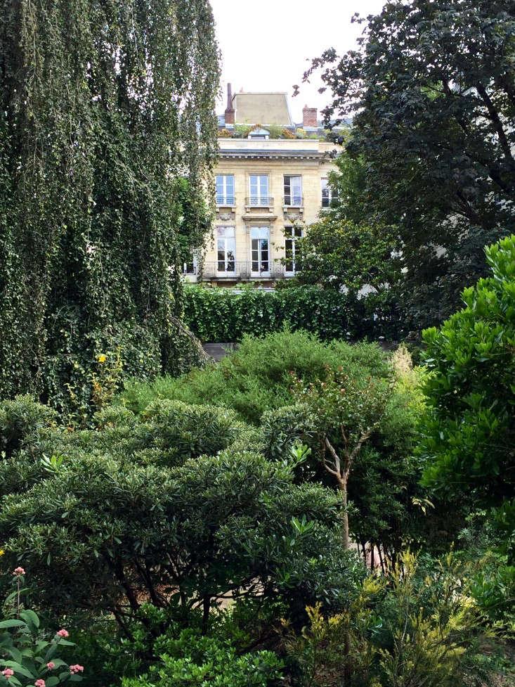 paris-wild-gardens-gardenista