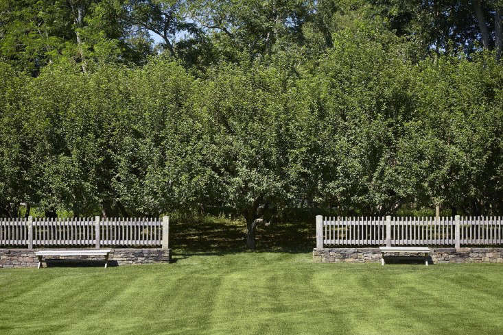scott-mitchell-bridgehampton-landscape-garden-orchard-picket-fence-gardenista
