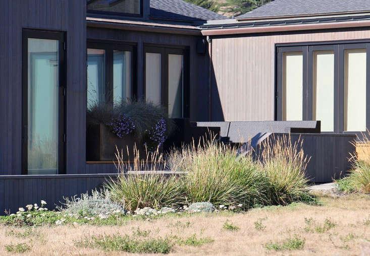 sea-ranch-planter-deck-grasses-meredith-swinehart-gardenista