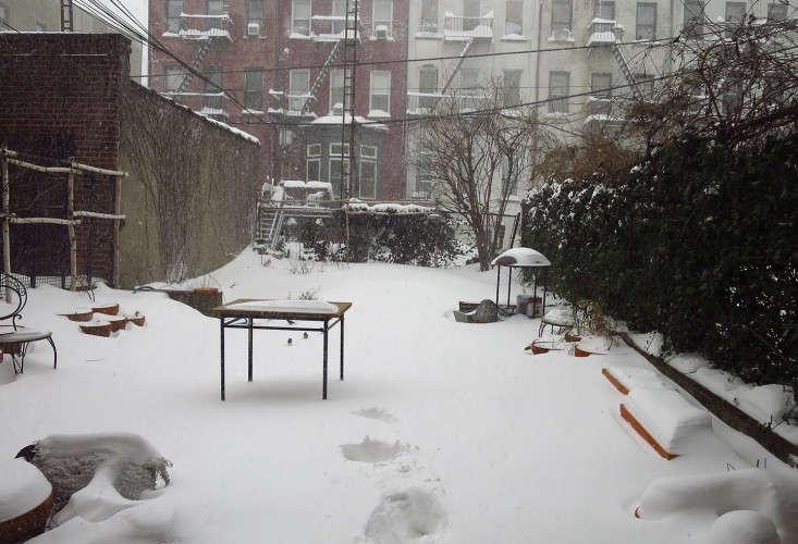 snow2_Brooklyn_marieviljoen_Gardenista