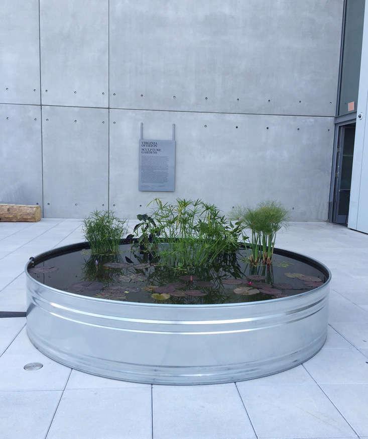 whitney-terrace-overton-ponds-3-gardenista
