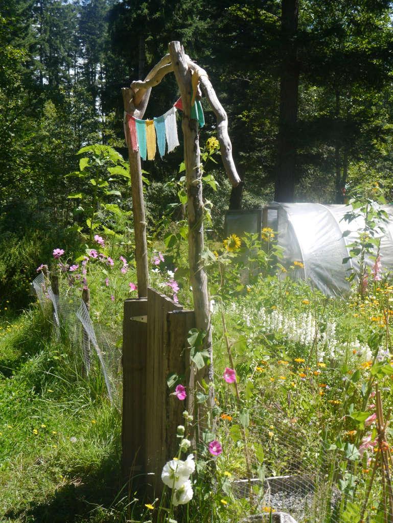A Garden Gate Honey Grove for Gardenista by Sylvia Linsteadt