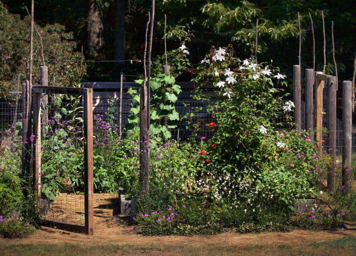 Concord Garden, Gardenista_edited-2