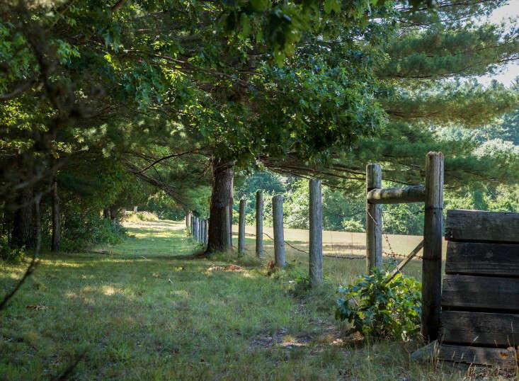 Concord Garden, field path, Gardenista