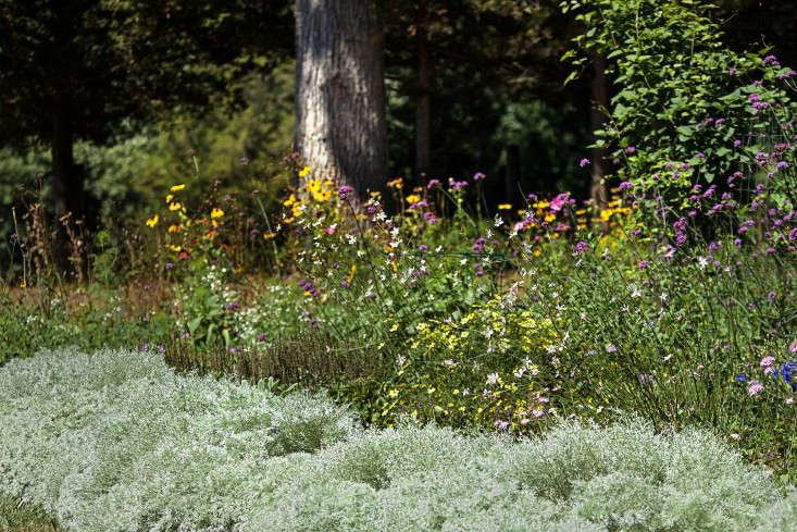 Concord garden perennial border, Gardenista