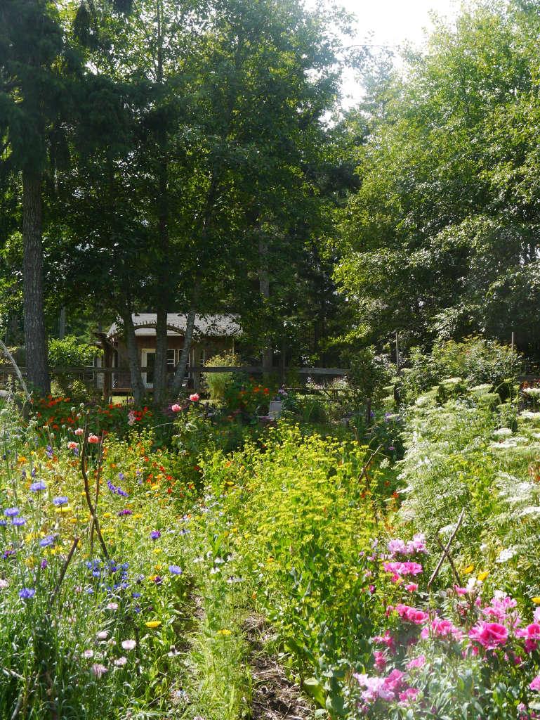 Honey Grove Garden views Gardenista by Sylvia Linsteadt