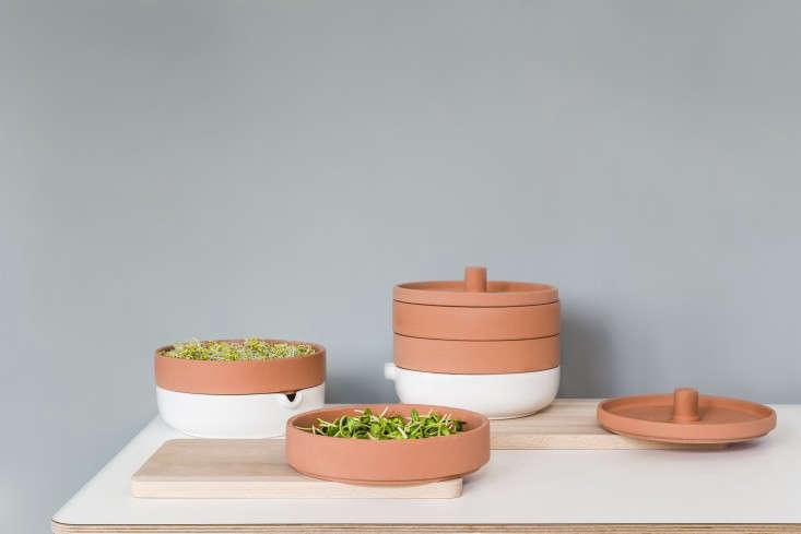 Ikea-design-Maja_Ganszyniec-Photo-Ernest_Winczyk-three-tier-sprouter-sprouts-gardenista