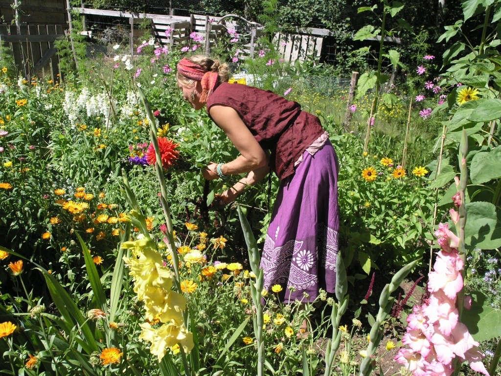 Nao with dahlia Honey Grove for Gardenista, by Sylvia Linsteadt