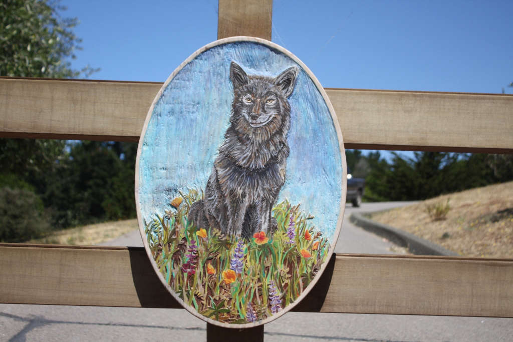 Spring Coyote Logo for Gardenista by Sylvia Linsteadt