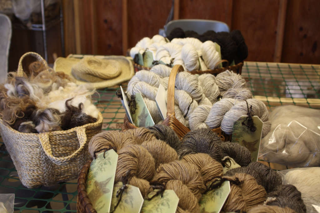 Spring Coyote Yarns for Gardenista by Sylvia Linsteadt