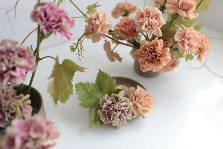 aerial-view-antique-carnations-sophia-moreno-bunge-gardenista