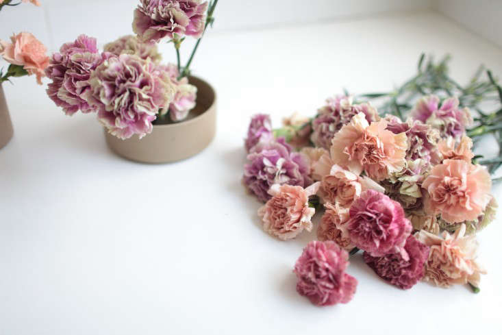 arranging-antique-carnations-sophia-moreno-bunge-6-gardenista
