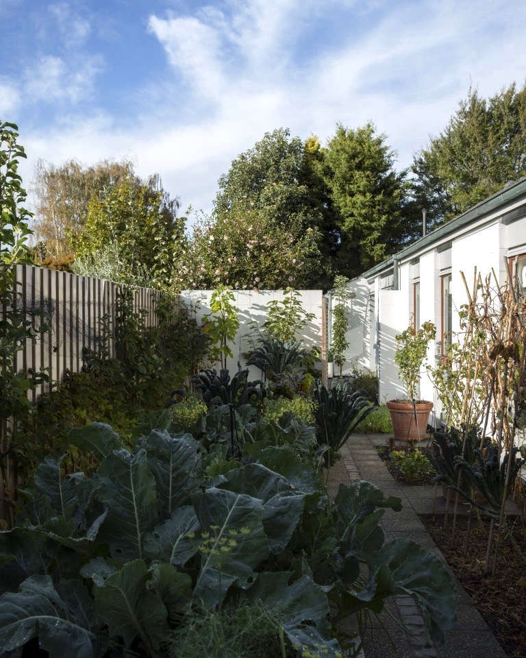 An abundant vegetable garden with espaliered heritage apples and pears along the back wall. &#8