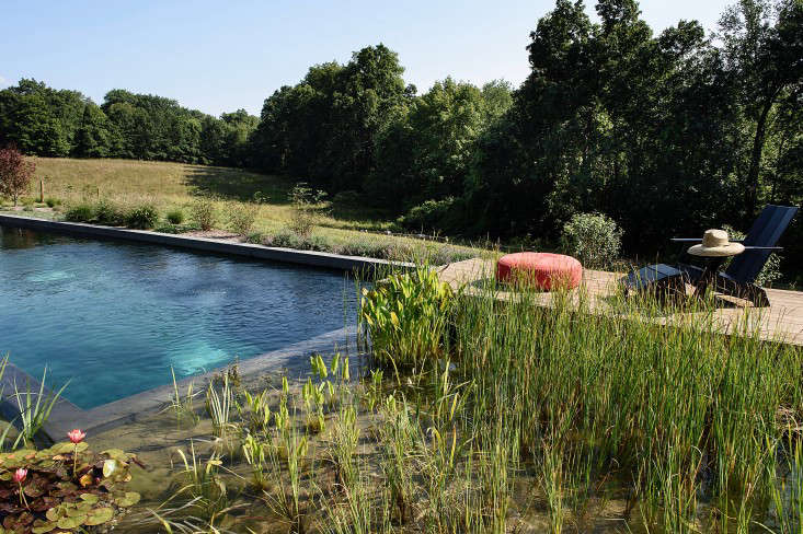 For more, seeArchitect Visit: A Natural Pool in New York&#8\2\17;s Hudson Valley. Photograph by Reto Guntli, courtesy of BarlisWedlick.
