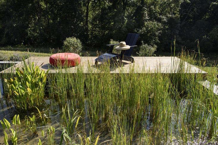 barlis-wedlick-reeds-grasses-platform-deck-swimming-pool-loll-gardenista