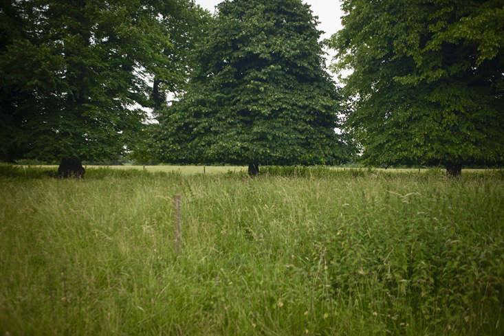 capability-brown-burghley-gardenista